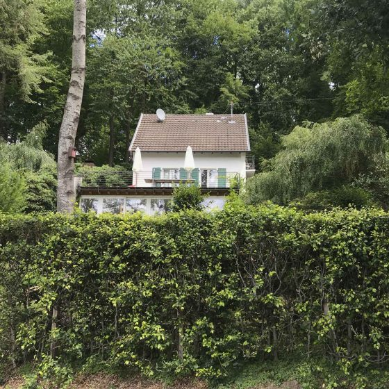 Das Ferienhaus liegt eingebettet in den Wald mitten in der Natur.