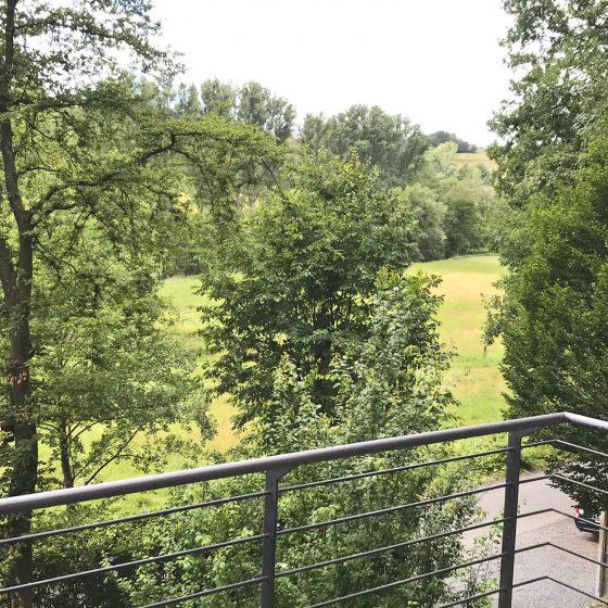 Blick von der Terrasse des Ferienhauses auf die Wiesen und Wälder im Hanfbachtal.